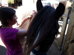 fig2 .horse care-plaiting flowers into mane